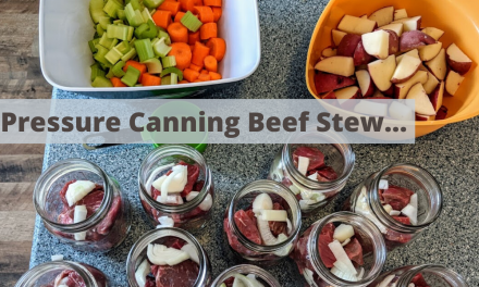 Pressure canning beef stew in a Presto pressure canner