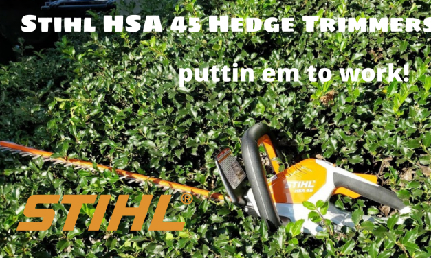 Stihl Hedge Trimmers HSA 45 Review