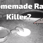 Homemade Rat killer?